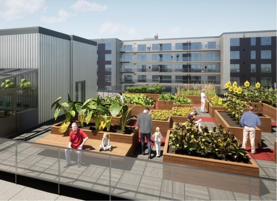 Jardin sur le toit au QG de Espace Centro